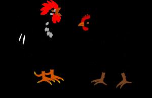 hen-and-rooster-clip-art-at-clker-com-vector-clip-art-online-6fqonk-clipart