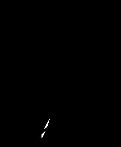 rooster-torso-black-white-hi