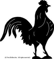 wv-bird-rooster